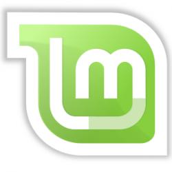 mengatasi linux mint bug sudo dpkg reconfigure resolvconf